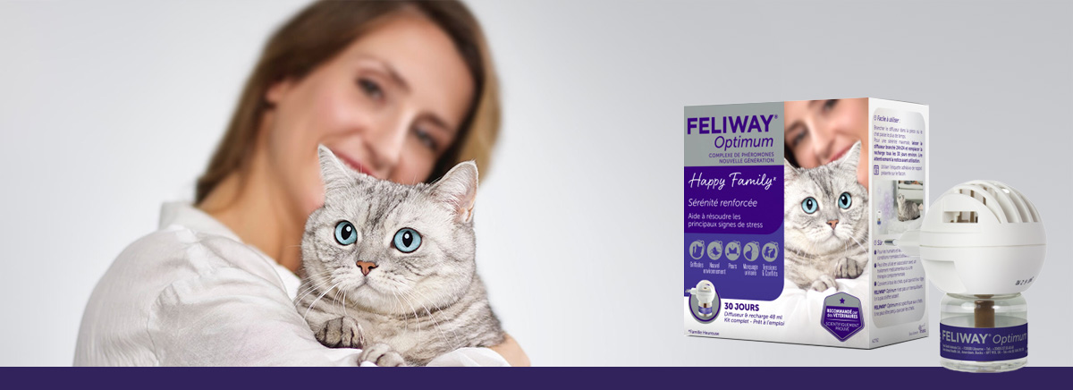 kit complet feliway pour chats
