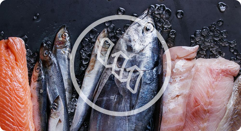 croquettes optimus fresh fish chien adulte poissons frais
