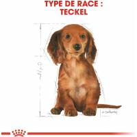 Royal Canin Breed Teckel Junior