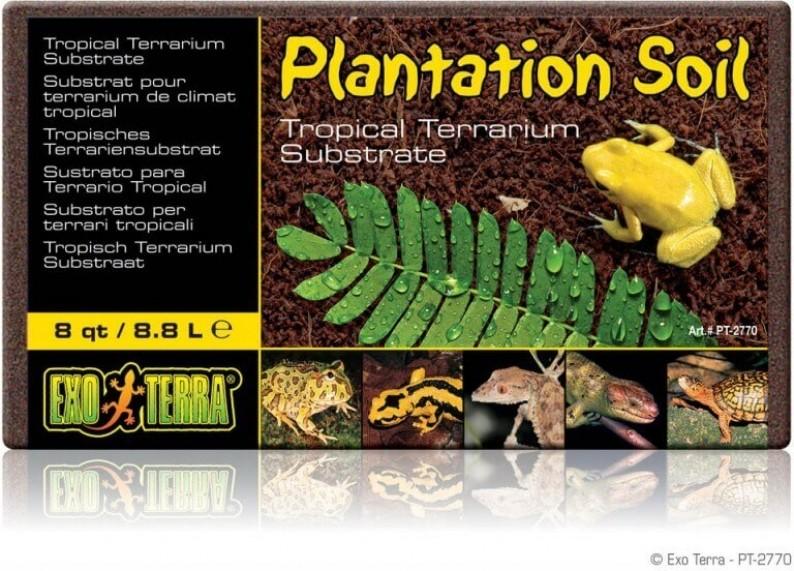Terre pour plantation Plantation soil