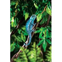 Liane flexible reptiles waterproof 180cm Exo-Terra