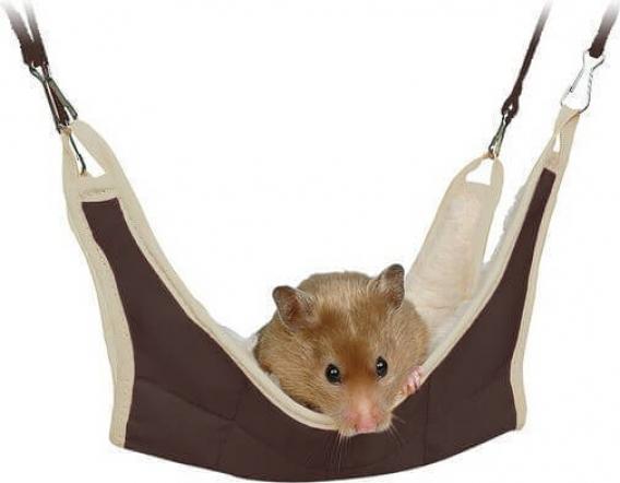 h ngematte f r hamster ratten m use und nagetiere. Black Bedroom Furniture Sets. Home Design Ideas