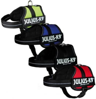 Power Harness Julius-K9 Baby 2