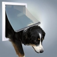 Dog doors and flaps