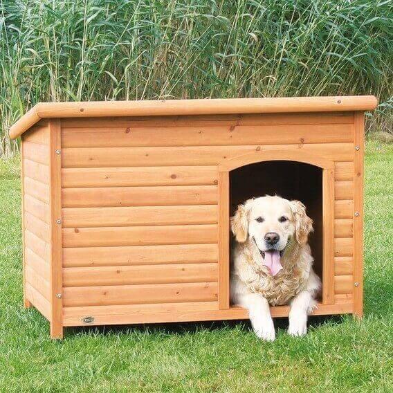 Niche toit plat pour chien natura niche for Niche exterieure pour chien