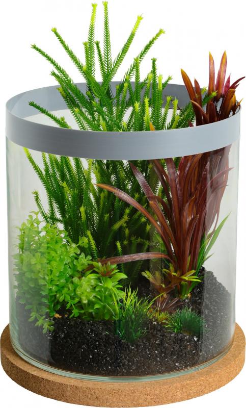 Aquarium, terrarium cylinder Life 12L