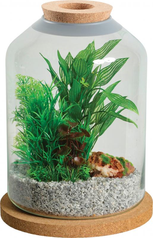 Aquarium, terrarium cloche Life 12L