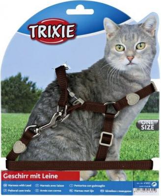 Harnais avec laisse pour chat