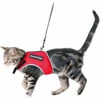 Halsband, lijn en tuigje voor katten