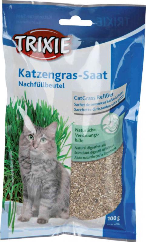 Herbe à chat en bac et sachet pour chat adulte