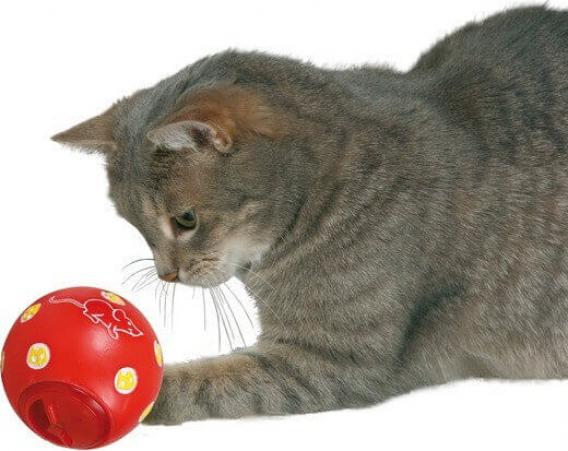 Snack ball Snacky
