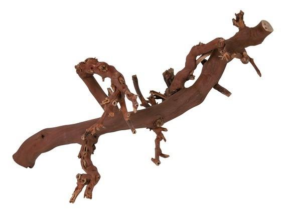 Assortiment de pied de vigne sabl d coration for Cep de vigne decoration