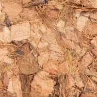Copeaux de noix de coco substrat naturel pour terrarriums