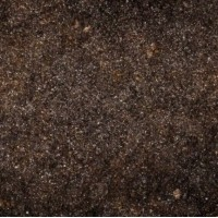 Reptile sand and substrates