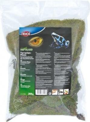 Mousse pour terrarium substrat humide