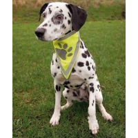 Reflective collars and leads