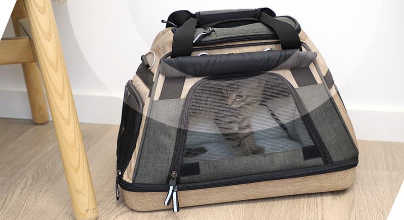 sac louxor zolia transport chat