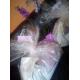 Soft-Snack-Bonies-pour-chiots-et-petits-chiens_de_Julie_9324562315b02ecab80dfb9.73126189