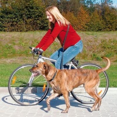 Correa bicicleta y jogging