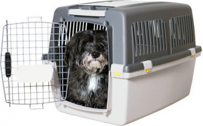 Transport crates for dog for planes