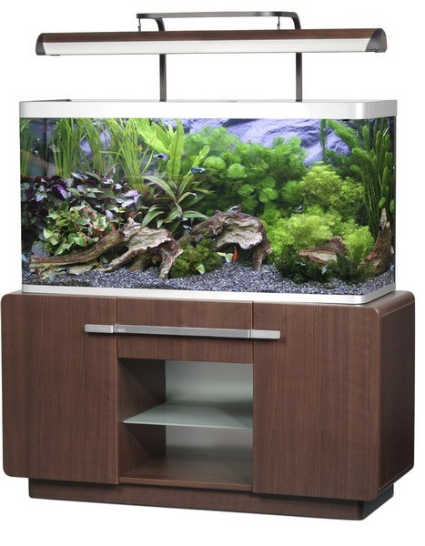 Rampe d 39 clairage t5 sans potence pour osaka 320 marron for Aquarium ouvert