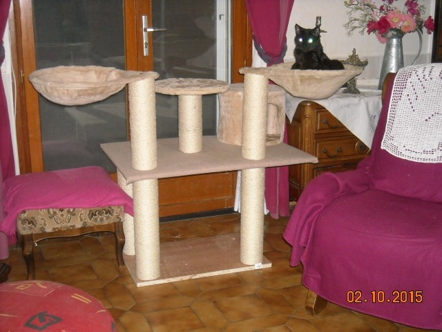 avis sur nid hamac pour poteau griffoir beige pour chat. Black Bedroom Furniture Sets. Home Design Ideas